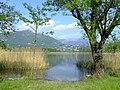 Lago di Annone - panoramio - Massimo Roselli (9).jpg