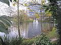 Lakeside Nature Reserve.JPG