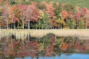 Cumming Nature Center - Image: Land Trust Cumming Nature Center 6