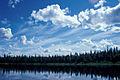 Landscape Innoko NWR.jpg