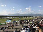 Launch area of the 22nd FAI World Hot Air Balloon Championship 3.jpg