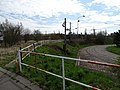 Levského, tramvajová smyčka (01).jpg