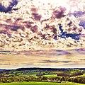 Limburgs landschap - panoramio (1).jpg