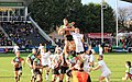 Lineout time (12560111615).jpg