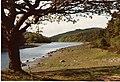 Llyn Y Parc - geograph.org.uk - 74854.jpg