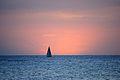 Lone sailboat at dusk (5216377560).jpg