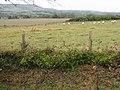 Looking W across the fields towards Milton Street - geograph.org.uk - 1028978.jpg