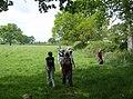 Lush grassland - geograph.org.uk - 438312.jpg