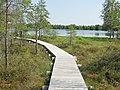 Mūšos tyrelis, takas prie Miknaičių ežero.JPG