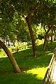MADRID A.V.U. JARDIN-CINTA S. FRANCISCO EL GRANDE - panoramio (4).jpg