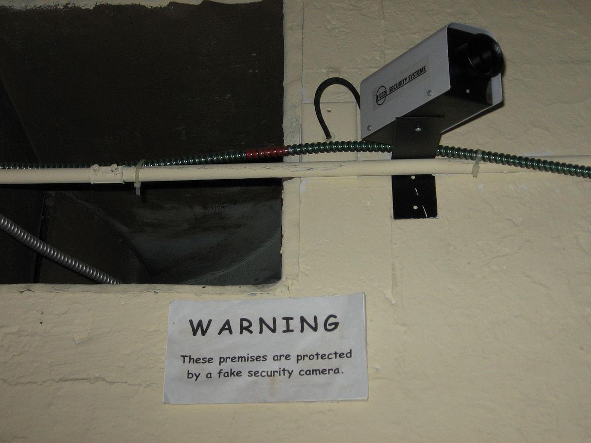 surveillance cameras good or bad