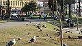 MacArthur Park, Los Angeles, CA, USA - panoramio (4).jpg