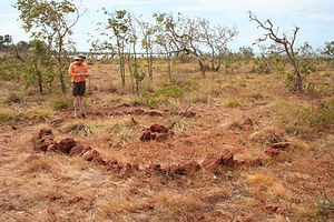 Makassan contact with Australia - Macassan Stone arrangement near Yirrkala, Northern Territory. Photo by Ray Norris