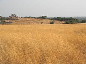 Madayi - Madayippara