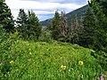 Madison County, MT, USA - panoramio (16).jpg