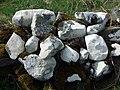Maes-y-mynydd (10) - geograph.org.uk - 1263932.jpg