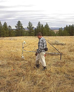 Magnetic survey (archaeology) - Magnetic survey of an archaeological site