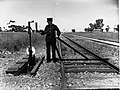 Man on the Track at Virginia(GN07481).jpg