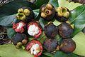 Mangoesteen fruits (Garcinia mangostana).JPG