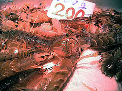 Mantis shrimp 200yen.jpg