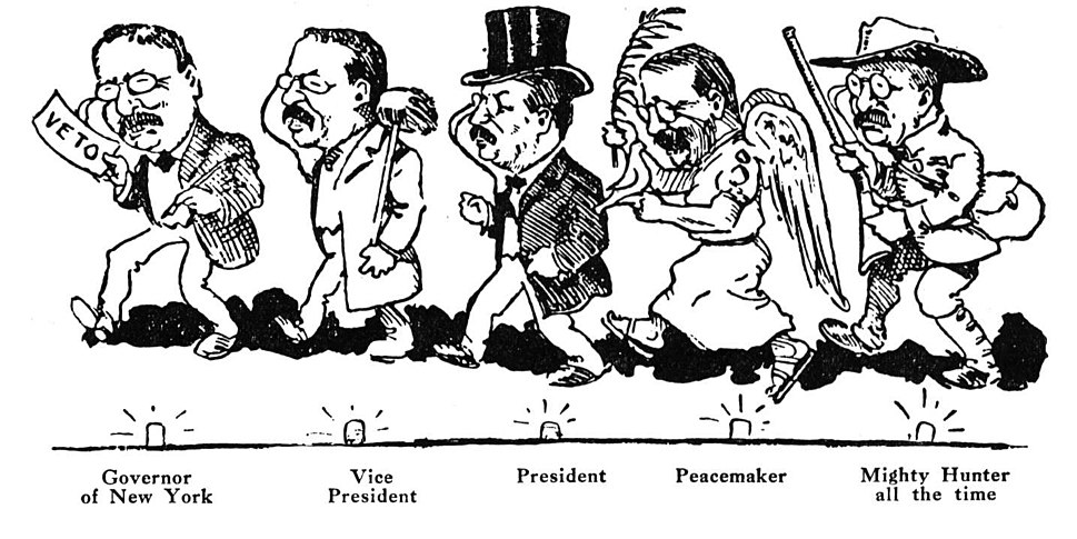 Many Roles of Theodore Roosevelt