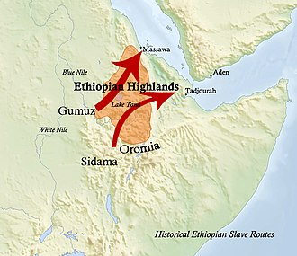 Arab slave trade - The historical routes of the Ethiopian slave trade.