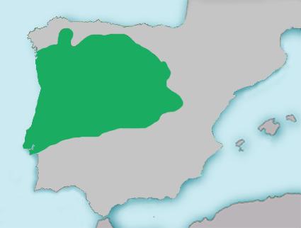 Mapa Squalius carolitertii