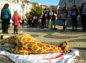 Marius (giraffe) - Sit-in protest in Lisbon, February 2014