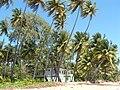 Mayaro Beach, Trinidad & Tobago 12.jpg