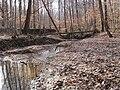 Meeman-Shelby Forest State Park Memphis TN 11.jpg