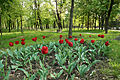 Memory Park in Belgorod 31.JPG
