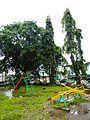 Mendez,Cavitejf8787 11.JPG