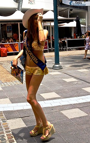 Parking enforcement officer - Meter maid in 2011.