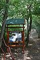 Mindszent, 6630 Hungary - panoramio (5).jpg