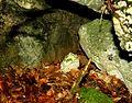 Mont-la-Ville, abri sous roche du Mollendruz, cavité.jpg