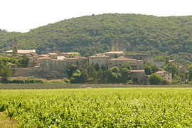 Distant view of Montclus with vineyards