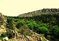Monte Capra - panoramio - nardi1987 (1).jpg