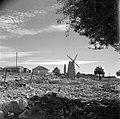 Montefiore windmolen, Bestanddeelnr 255-0360.jpg