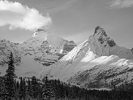 Mount Athabasca.jpg