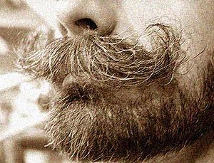 English: A moustache