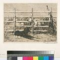 Moutons parqués, d'après Brendel (NYPL b14504923-1130966).jpg