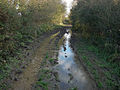 Muddy bit of bridleway - geograph.org.uk - 1082666.jpg