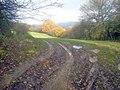Muddy gateway near Dead Woman's Thorn - geograph.org.uk - 1599085.jpg