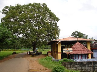 Muthuthala village in Kerala, India
