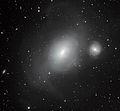 NGC 1316 - Galactic Serial Killer.jpg