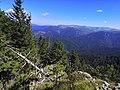 NP Veľká Fatra, výhľad z Veľkej Hubnej (4).jpg