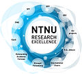 NTNU Research Excellence.jpg