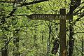 Nationaal Park Drents-Friese Wold 013.JPG