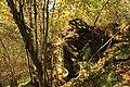 Nature reserve Dobrockovske hadce in autumn 2011 (39).JPG