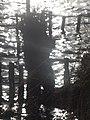 Naturschutzgebiet Ewiges Meer 31-10-2018 Chr Didillon DSC01778 (98).jpg